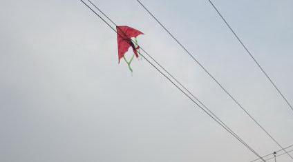 Diều mắc trên dây điện
