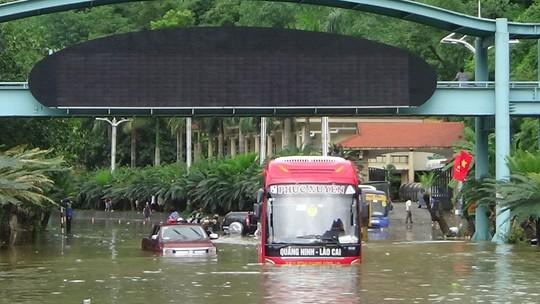 Mưa lũ gây ngập lụt khắp nơi trên địa bàn tỉnh Quảng Ninh