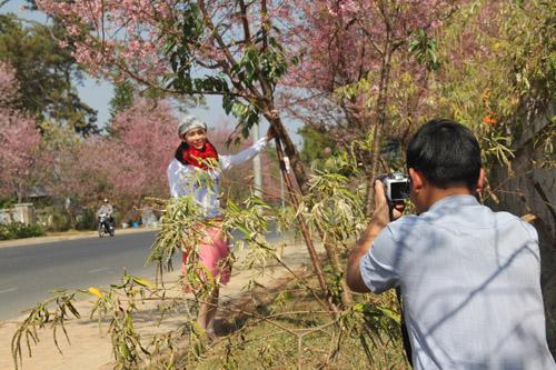 Các bạn gái thích thú khi chụp hình với hoa mai anh đào.