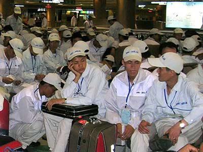 Hai công ty xuất khẩu lao động bị thu hồi giấy phép