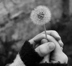 Không nhất thiết phải nắm mãi bàn tay kia, miết mãi từng ngón tay vì có lúc cũng phải buông.