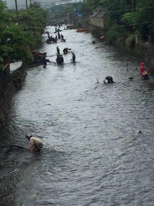 Cảnh ngập lụt ở Quảng Ninh. Ảnh: Trọng Đức