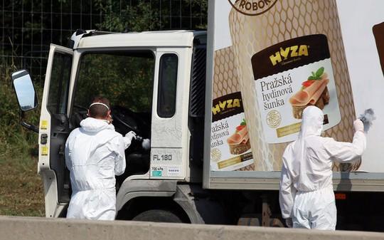 Các nhà điều tra lục soát chiếc xe tải chở thi thể đang phân hủycủa 71 người nhập cư trái phép ở Áo. Ảnh: AP