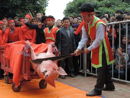 Cảnh chém lợn trong lễ hội truyền thống của làng Ném ThượngẢnh: AAF