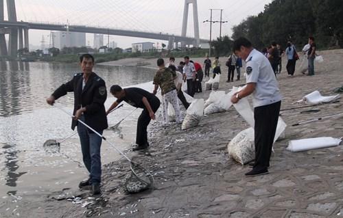 Dọn dẹp chết ở Thiên Tân. Ảnh: Reuters