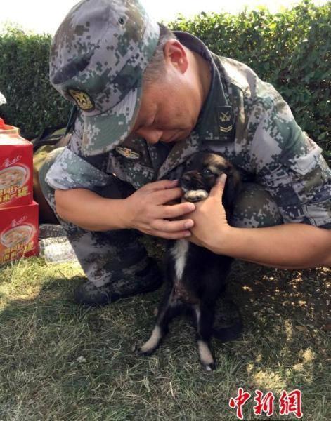 ...và không hề rời khỏi người cứu mình. Ảnh: Chinanews