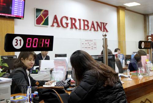 Khách hàng giao dịch tại Agribank