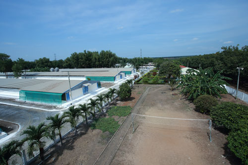 Trang trại chăn nuôi của Công ty CP Hùng Nhơn