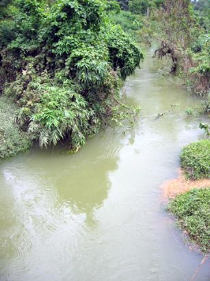 Một đoạn suối Sa Mách (ảnh: B.Đ.N)