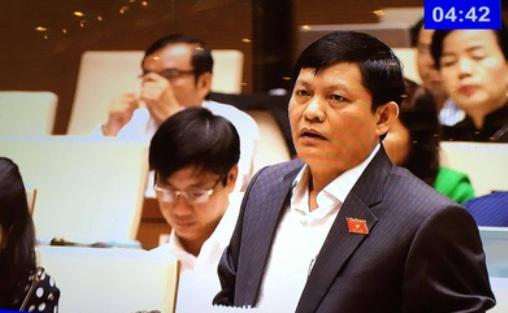 ĐB Phạm Phú Quốc (TP HCM) lưu ý tiếp cận vốn đầu tư nước ngoài cần theo danh mục định hướng sẵn - Ảnh chụp màn hình