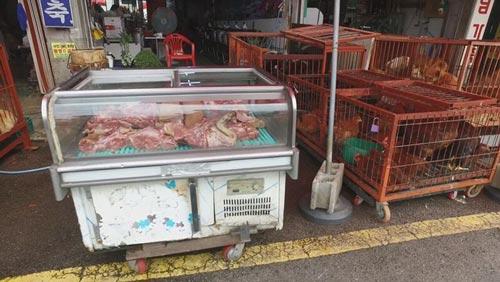 Chợ Moran tại TP Seongnam Ảnh: CARE2.COM