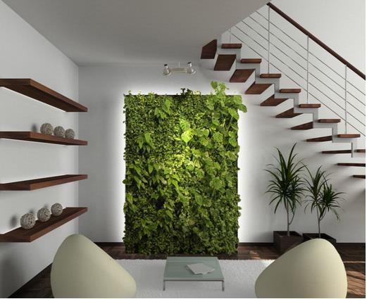 Những bức tường cây xanh trong nhà vừa giúp làm đẹp không gian sống, vừa đem lại cảm giác mát mẻ, thư giãn cho gia đình