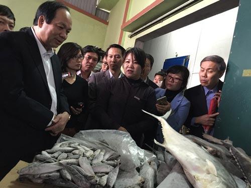 Bộ trưởng Mai Tiến Dũng thị sát các kho đông lạnh ở Quảng Bình vào sáng 15-12