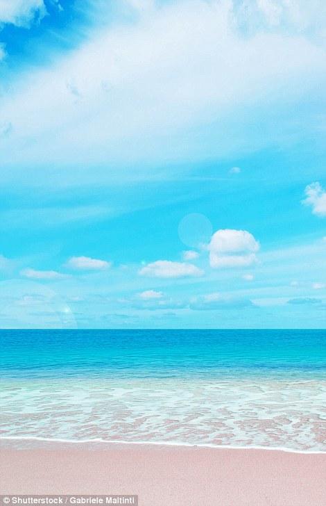 Biển hồng tại đảo Sardinia - Ý. Ảnh: Shutterstock