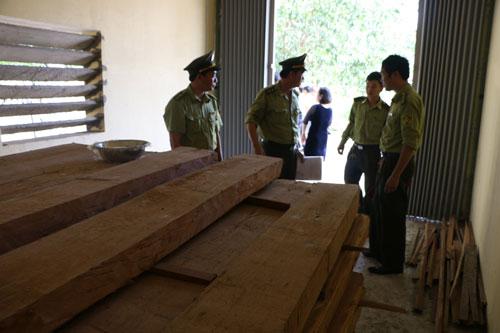 Thu giữ gỗ cất giấu tại Chi cục Tiêu chuẩn - Đo lường - Chất lượng Quảng Bình