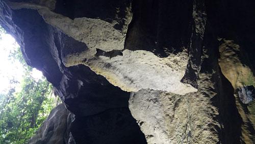 Thạch nhũ trong các hang động ở vịnh Hạ Long bị tàn phá