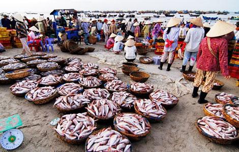 Muốn thu mua hàng ở cảng cá Phước Tỉnh không dễ nếu không đóng hụi chết cho giang hồ. Ảnh: minh họa