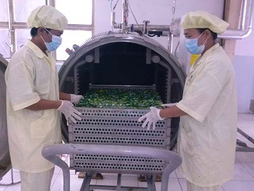Sản phẩm trứng cút tiệt trùng của Vietfarm