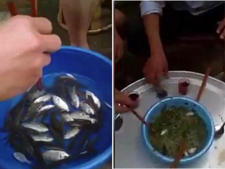 Món gỏi cá sống. Ảnh: Daily Mail