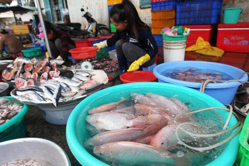 Một điểm kinh doanh thủy hải sản tại chợ Bà Chiểu, quận Bình Thạnh, TP HCM Ảnh: Hoàng Triều