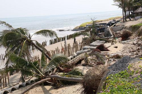 Đợt mưa lớn vừa qua đã gây sạt lở nghiêm trọng ở bờ biển Cửa Đại