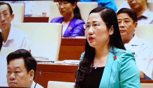 ĐB Nguyễn Thị Thủy đề nghị lựa chọn như quy định của luật các nước, đó là không tính theo hàm lượng tinh chất ma tuý - Ảnh chụp qua màn hình