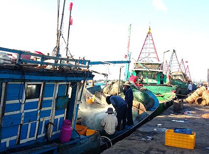 Cảng cá Phước tỉnh, nơi nhóm giang hồ thu tiền bảo kê của các đầu nậu