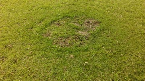 Mặt sân cỏ rất xấu