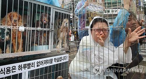 Chợ Moran bị rất nhiều các nhóm hoạt động vì quyền lợi động vật chỉ trích. Ảnh: Yonhap