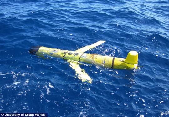 UUV là thiết bị đo độ mặn và nhiệt độ nước biển của Hải quân Mỹ. Ảnh: DAILY MAIL