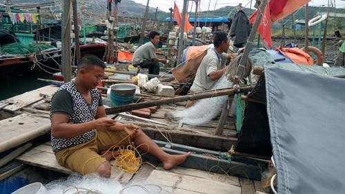 Ngư dân tránh bão ở cảng Quảng Hồng (Cẩm Phả, Quảng Ninh) lại chuẩn bị ngư cụ vào chiều 19-10 để ra khơi