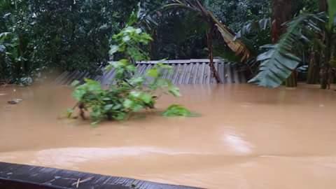 Nước lũ ngập đến nóc nhà một hộ dân xã Đức Hóa (ảnh Ngọc Hà)
