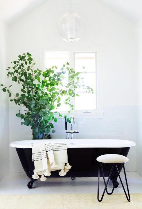 Những chậu cây xanh là giải pháp tối ưu cho một phòng tắm thoáng đãng, trong lành.
