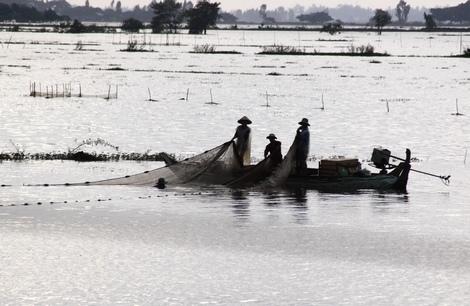 Mặc dù nước trên đồng không cao như những năm trước nhưng người dân vẫn đánh bắt kiếm sống qua ngày nước nổi.