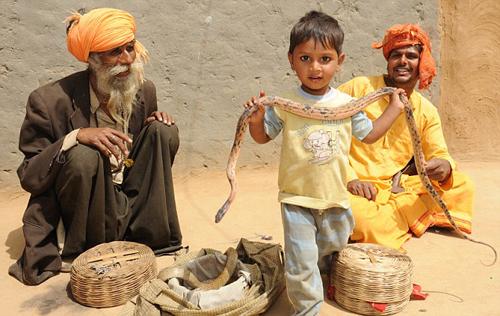 Trẻ em Ấn Độ học thôi miên rắn từ khi lên hai