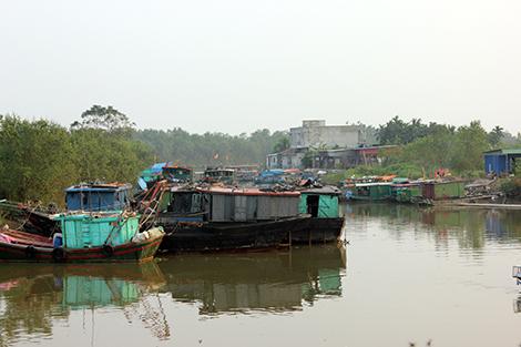 Những đoàn thuyền cũ ngày nào giờ chỉ để đi câu mực và đánh cá nhỏ.