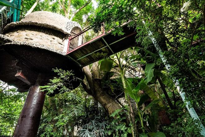 Nhà cây độc đáo ở ngoại thành Hà Nội