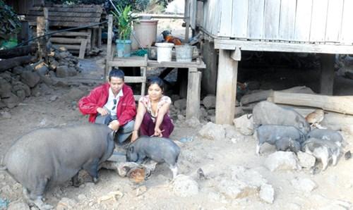 H'Ban (phải) làm thuê, nuôi lợn để tích góp tiền đi bắt chồng.