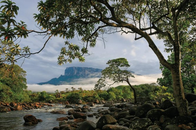Núi Roraima ở Venezuela - Ảnh: National Geographic