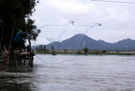 Nước ở khu vực xã Vĩnh Tế còn rất ít, nhưng nông dân cũng thi nhau ra đập chài cá.