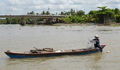 Chú Nguyễn Văn Lượm (ấp Đông, xã Kim Sơn, huyện Châu Thành, tỉnh Tiền Giang) thả lưới bắt cá và lượm củi trên sông Tiền