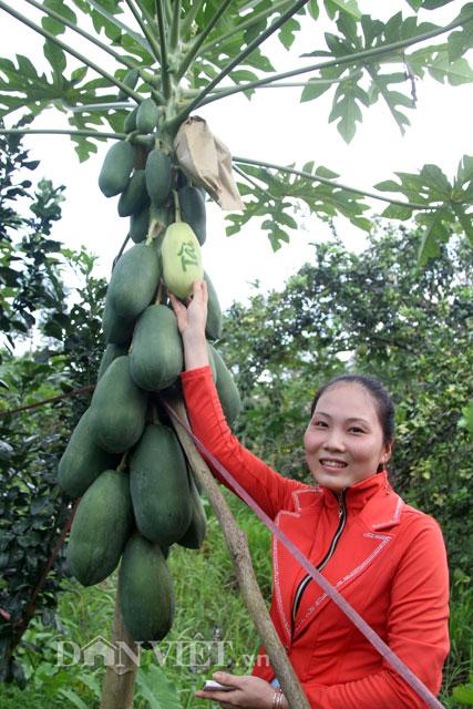 Nhóm nông dân ở xã Phú Hữu rất mong được đón nhận, đóng góp ý kiến từ phía người dân địa phương, khách hàng gần xa. Riêng bản thân nhóm cũng không ngừng cải tiến để sản phẩm ngày càng hoàn thiện hơn.