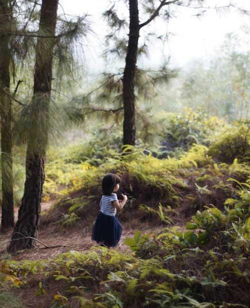 Trẻ em cũng có không gian để khám phá khu rừng xung quanh, gần gũi với thiên nhiên