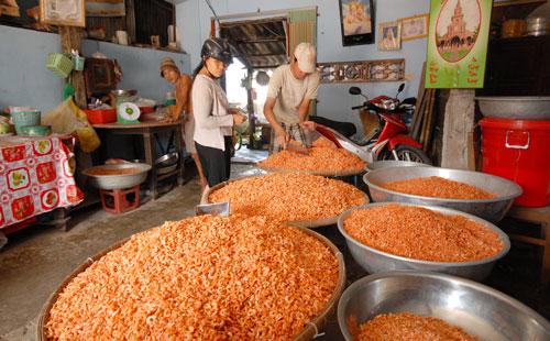 Một cơ sở ở xã Vĩnh Kim đang tất bật làm tôm khô Ảnh: Ngọc Trinh