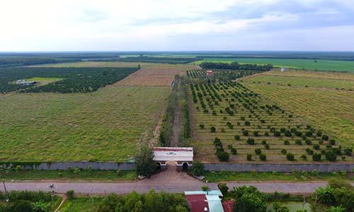 Một nông trang của Vinamit