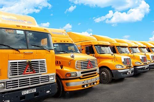 Tân Nam Chinh Việt Nam Cold Logistics hợp tác với Vinalines Hải Phòng để giảm 20% cước phí vận chuyển hàng lạnh trên lộ trình Bắc - Nam Ảnh: Quốc Minh