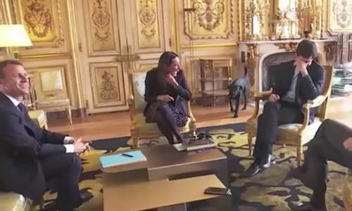 Chó cưng của tổng thống Pháp làm 3 quốc vụ khanh bó tay - Ảnh 1.