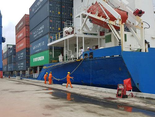 Cảng Tân Cảng - Cái Cui (TP Cần Thơ) được đánh giá tương đối phù hợp để phát triển logistics
