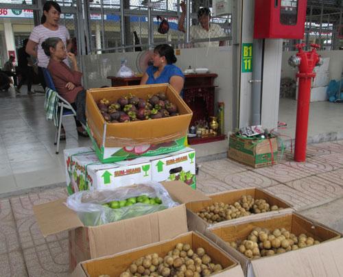 Việt Nam xuất hộ trái cây cho Thái Lan! - Ảnh 1.