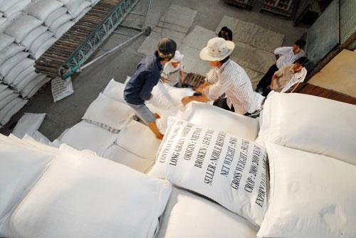 Xuất khẩu gạo giảm mạnh trong 2 tháng đầu năm Ảnh: Ngọc Trinh